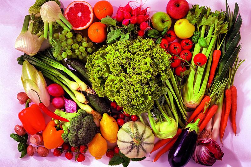 Sabi's Physio Profis Ernährungsberatung